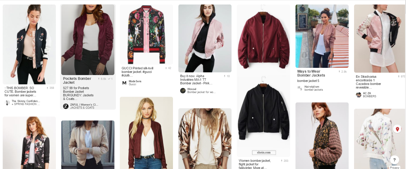 niche example for a fashion blog
